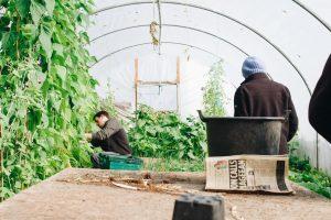 Quels sont les critères pour percevoir la prime d'activité pour les exploitants agricoles ?