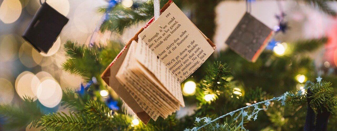 Peut-on percevoir ASS et prime de Noel?